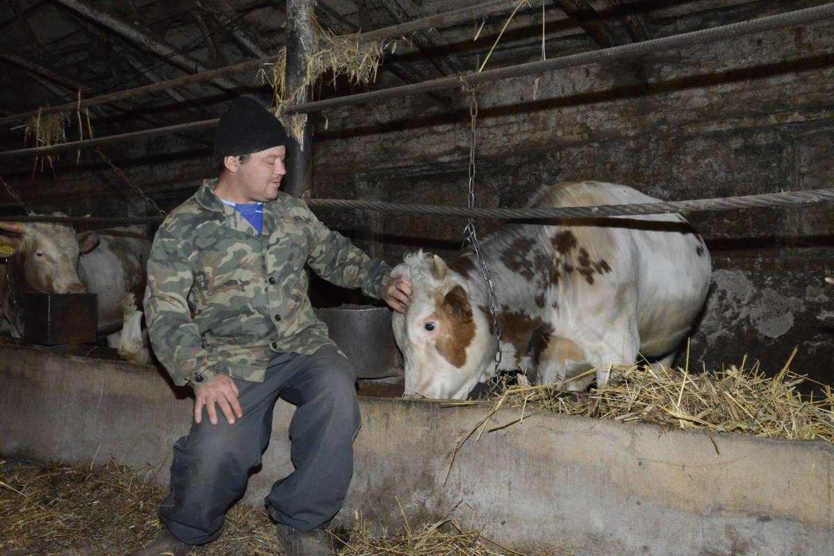 23 фермера получат более 55 миллионов рублей