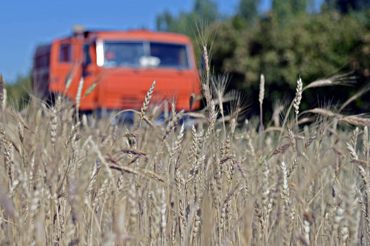 Оренбургские аграрии продолжают уборку урожая
