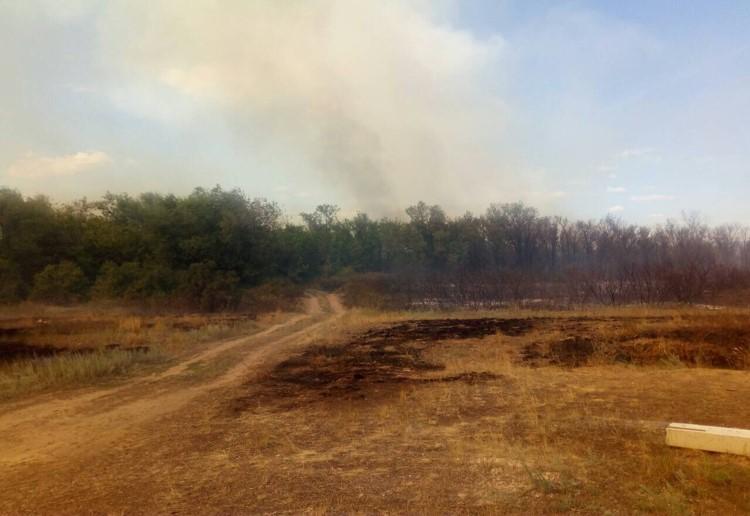 Пожарные остановили огонь в степи