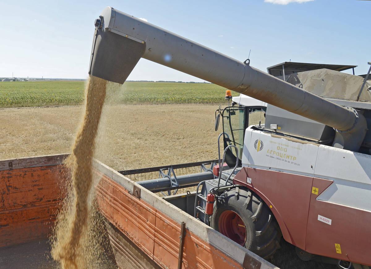 Есть два миллиона тонн зерна!