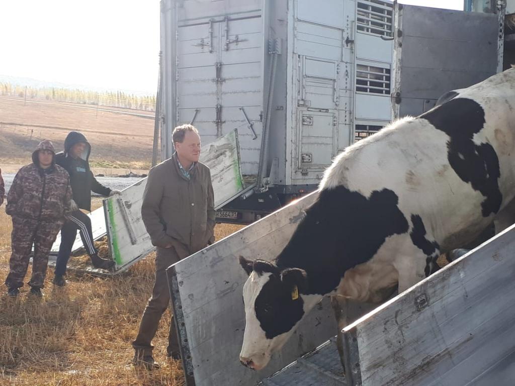 Молоко по новым технологиям