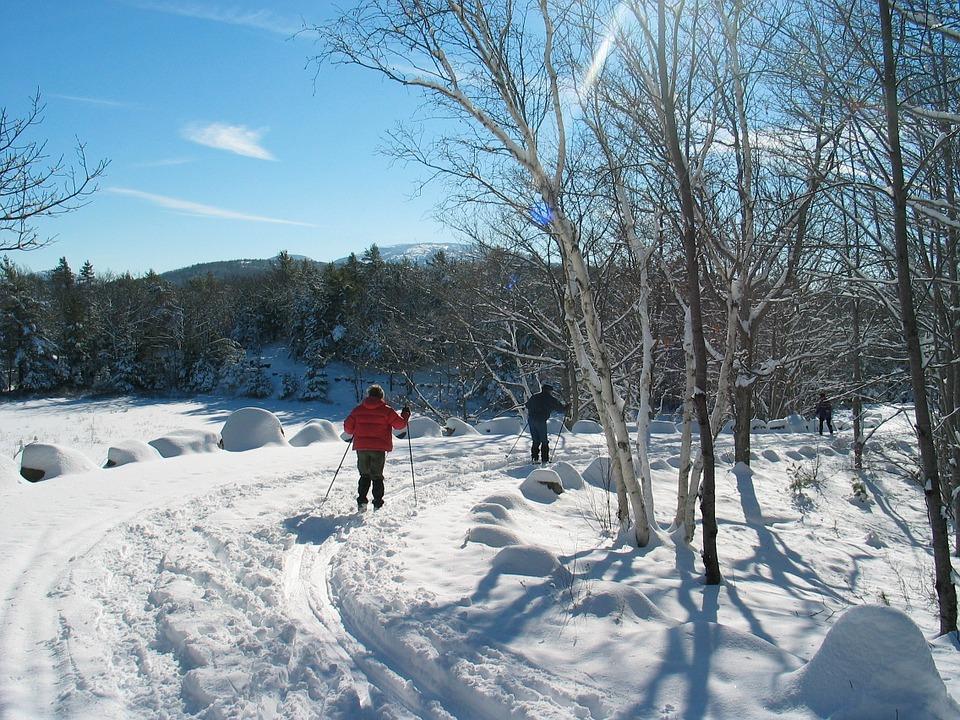 Лыжи для гармонии