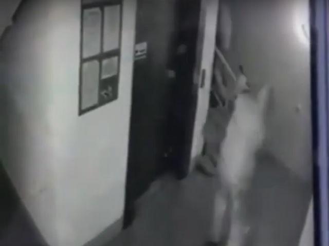 Убийство зам директора орских городских электросетей попало на видео