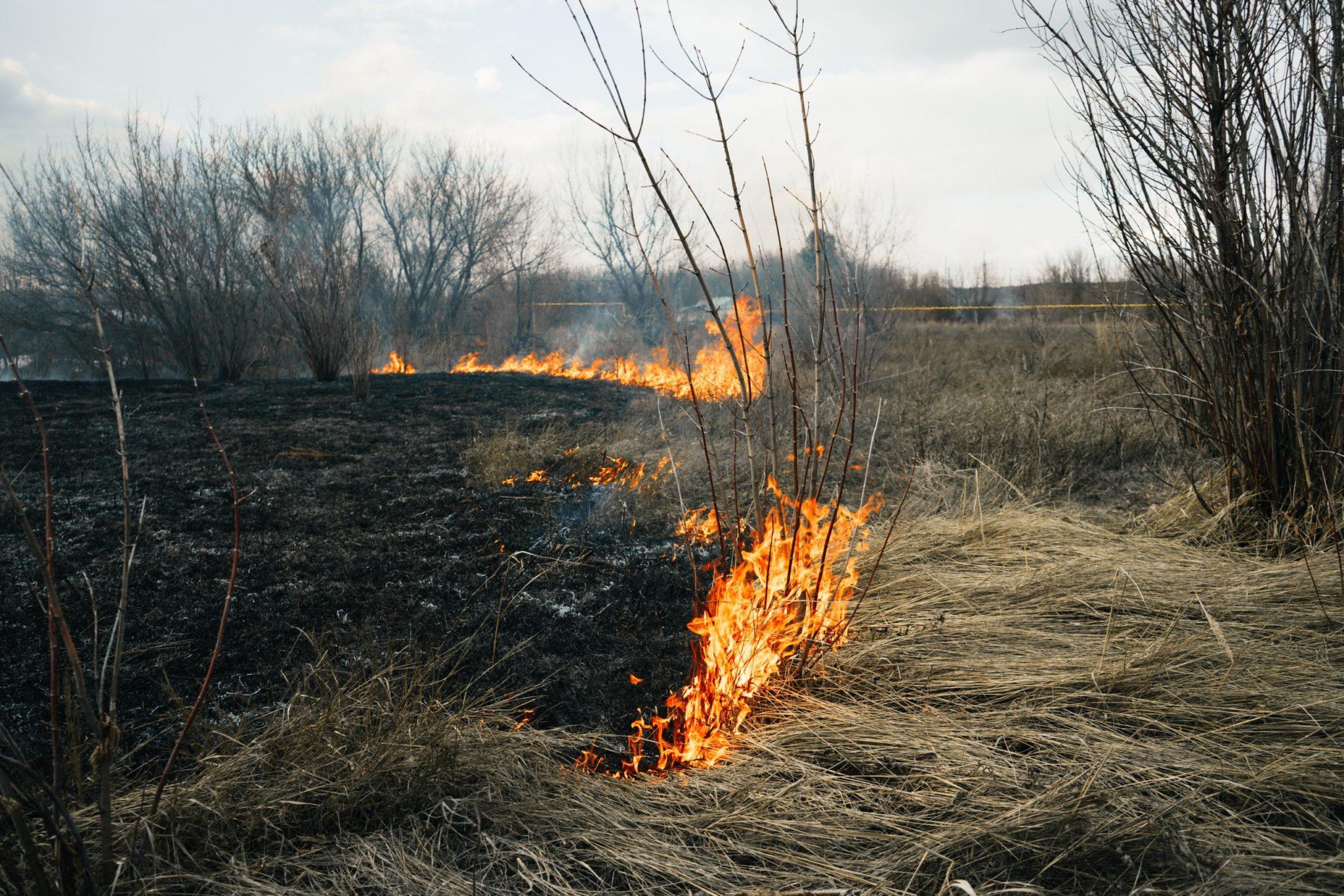 В Оренбуржье уже 25 раз горела сухая трава