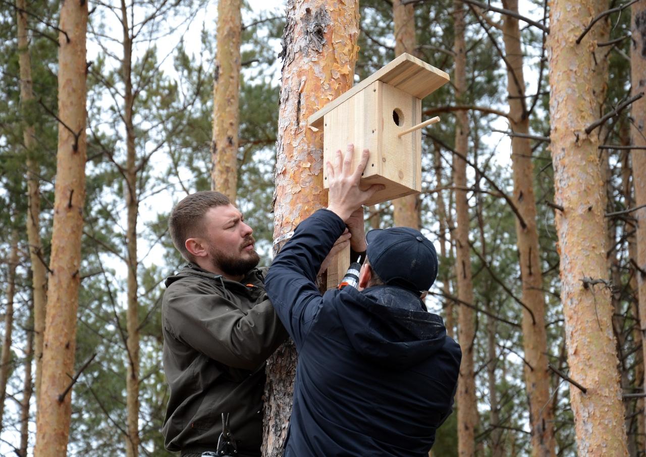 Оренбургские школьники установили домики для птиц