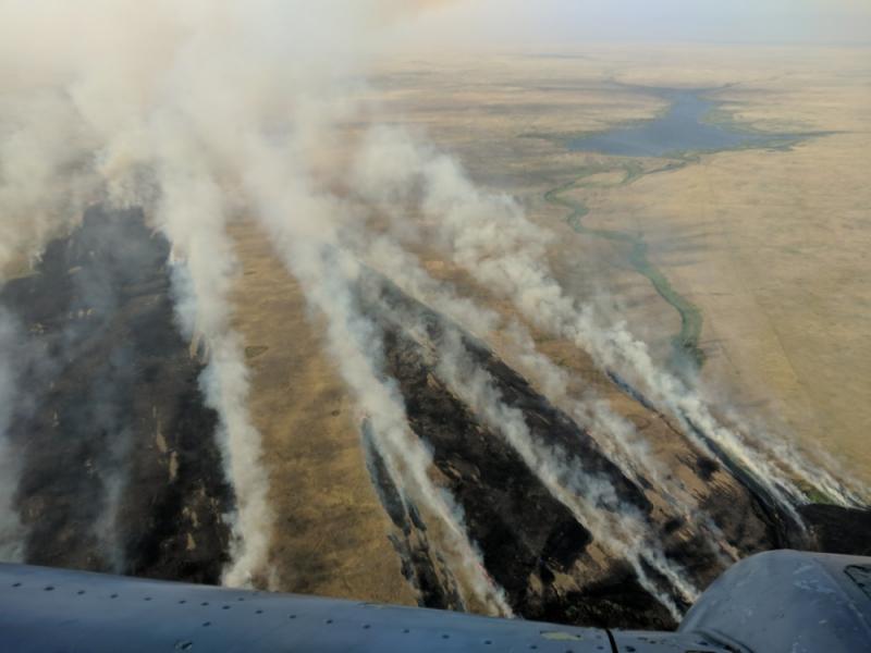 Степные пожары в Оренбуржье: огнем охвачены 50 тысяч гектаров
