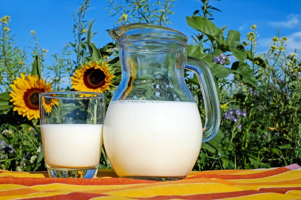 В Оренбургской области на прилавки не пустили потенциально опасную молочку