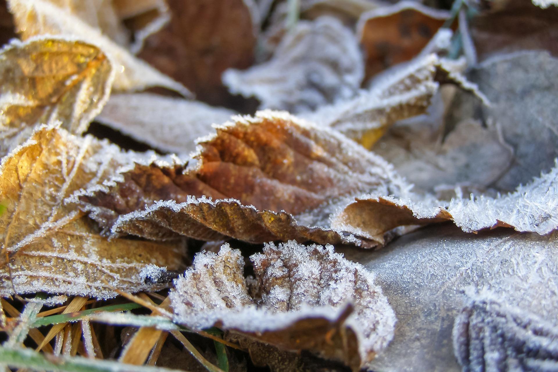 В Оренбуржье ожидается резкое понижение температуры