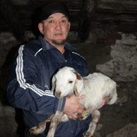 Фермер из села Акжарское из Ясненского района поделился опытом господдержки